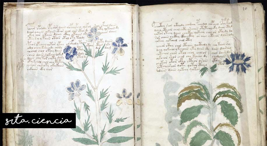 voynich, ciencia, manuscrito indescifrable
